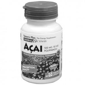 Acai berry 60 x 500 mg Capsules met 50 mg Polyphenols